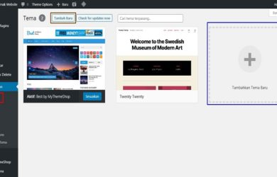Cara Instal dan Ganti Theme Website
